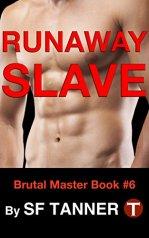 runaway-slave